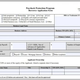 Fill Out Your PPP Loan Application in 10 Easy Steps